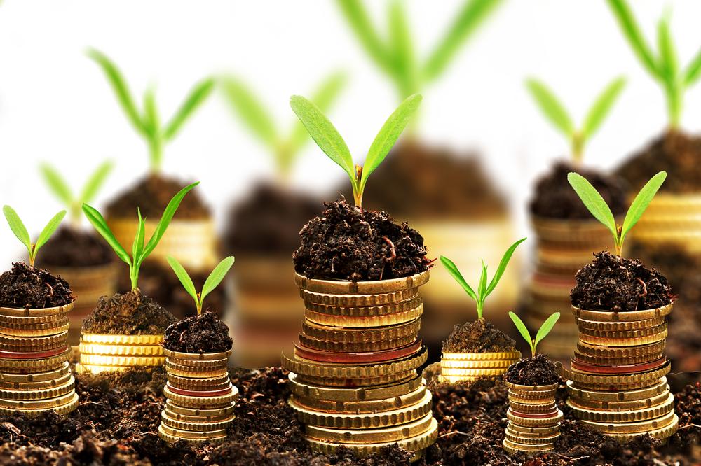 Umweltgerecht investieren